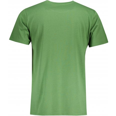 Pánské triko ALPINE PRO LESAW MTSU700 ZELENÁ